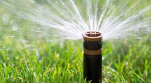 water irrigation system in condos